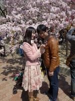 BL140411桜の通り抜け2P1100469
