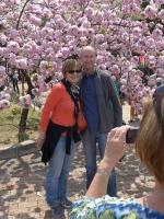 BL140411桜の通り抜け5P1100493