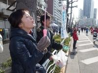BL140223東京マラソン21-2P2230473