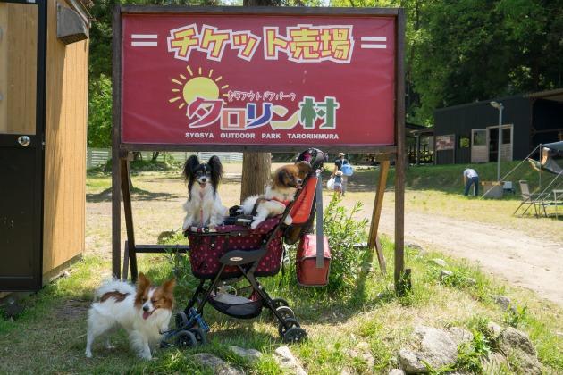 姫路「タロリン村」プチオフ会【紹介編】-001