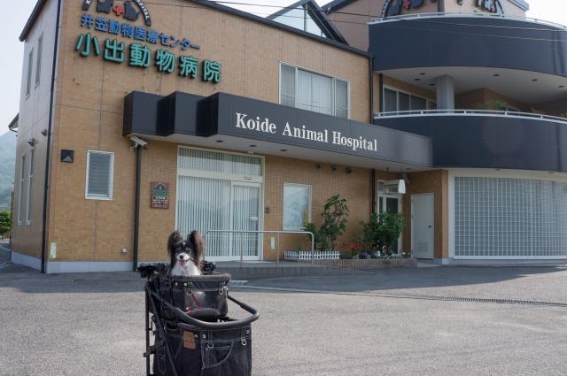 岡山の病院に行って来ました-004