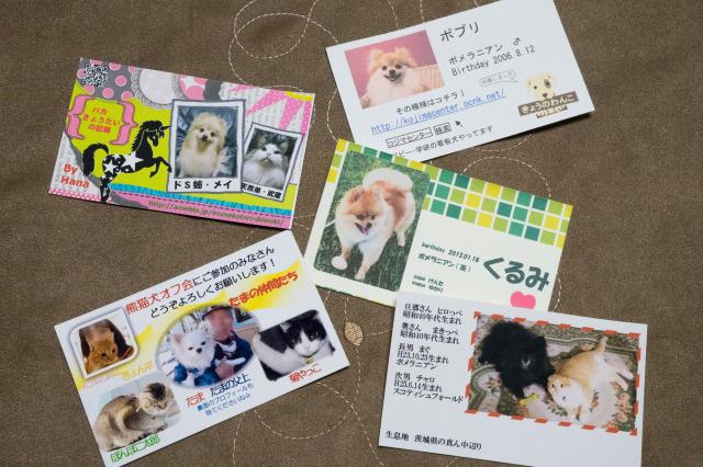 「熊猫犬オフ会」感動のフィナーレ♪-017