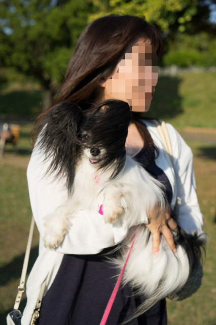 「熊猫犬オフ会」番外編 ~あゆりすさんがマリィを抱っこ♪~-002