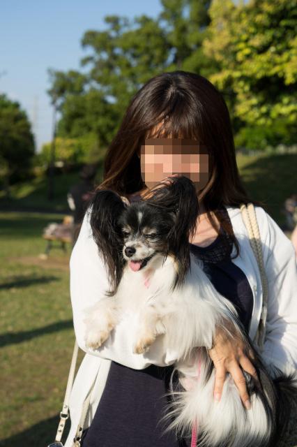 「熊猫犬オフ会」番外編 ~あゆりすさんがマリィを抱っこ♪~-005