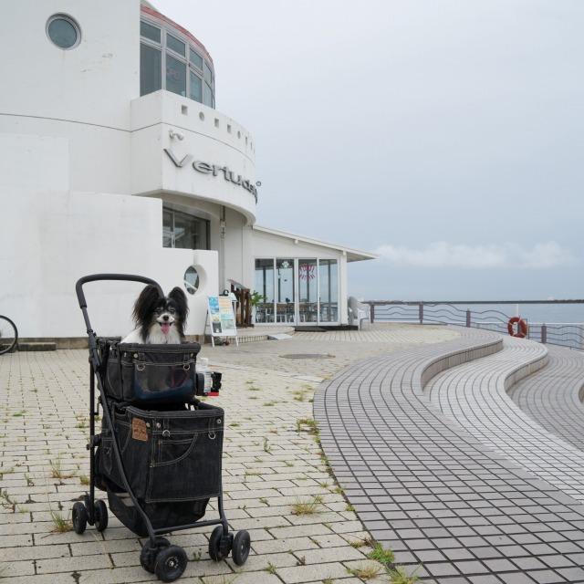 ステンドグラス贈呈オフ会♪ ~海辺のカフェ編~-001