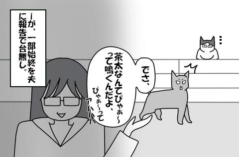 20140317-8.jpg