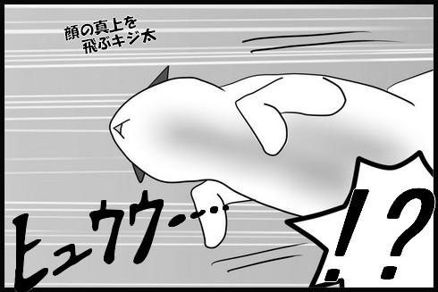 20140321-6.jpg