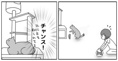 20140717-8.jpg