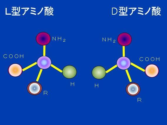 D型アミノ酸構造