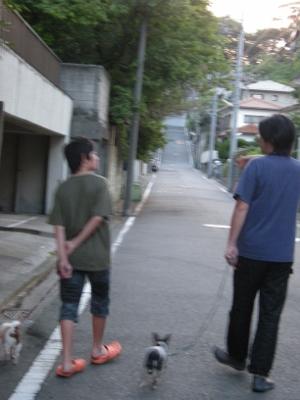 遠出の散歩の住宅街1