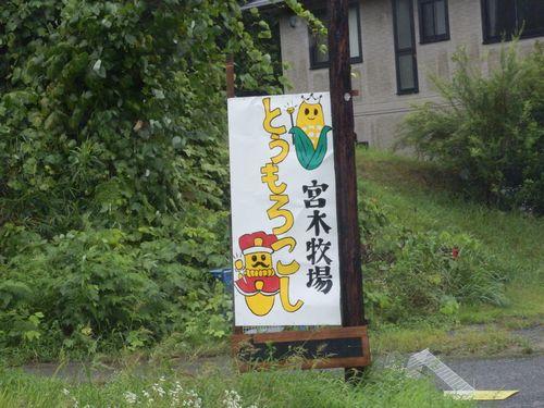 2014夏 桃&とうもろこし (1)