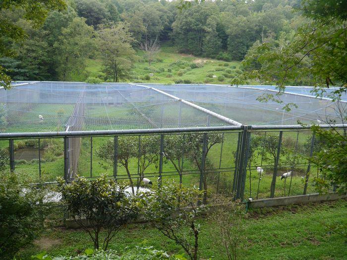 岡山県自然保護センター (12)