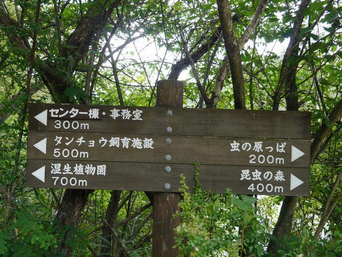岡山県自然保護センター (5)