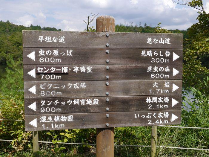 岡山県自然保護センター (4)