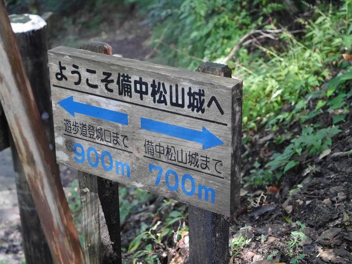 松山城 雲海場所 (8)