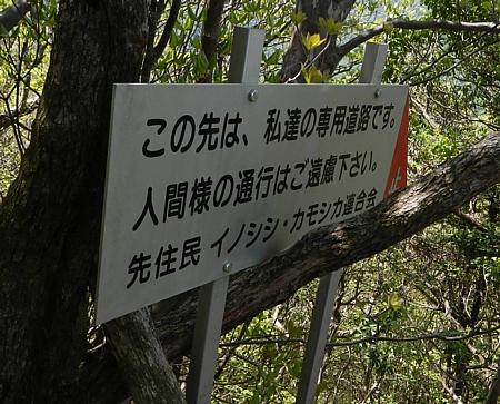 201405_ihaidake_11.jpg