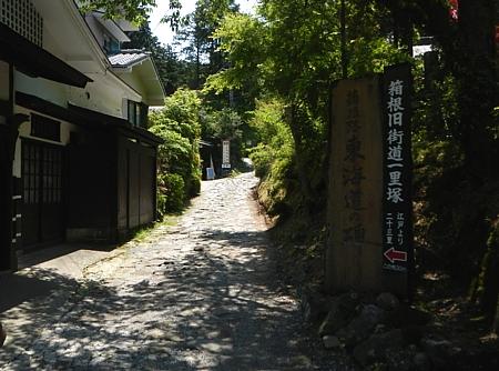 201405_odawara_mishima_20.jpg