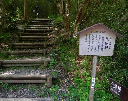 201405_odawara_mishima_27.jpg