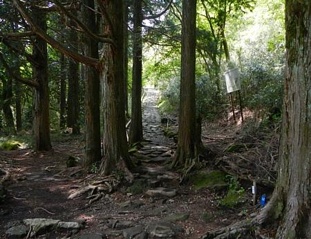 201405_odawara_mishima_31.jpg