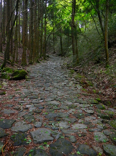 201405_odawara_mishima_32.jpg