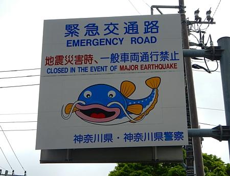 201405_odawara_mishima_36.jpg