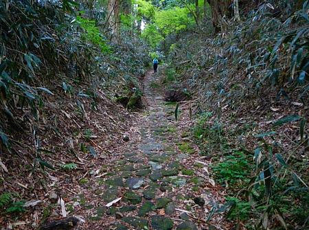 201405_odawara_mishima_41.jpg