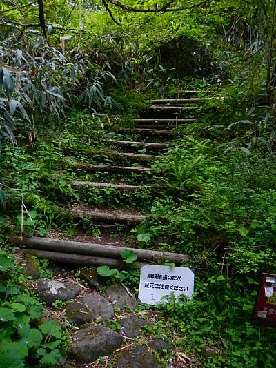 201405_odawara_mishima_42.jpg