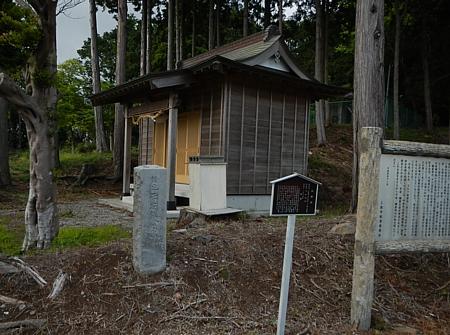 201405_odawara_mishima_kodo_24.jpg