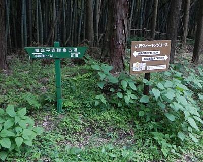 201405_odawara_mishima_kodo_27.jpg