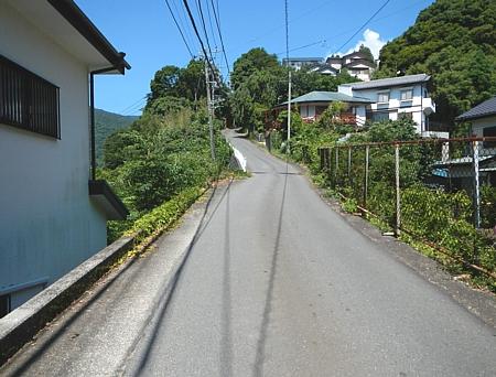 201406_shiranuta_05.jpg