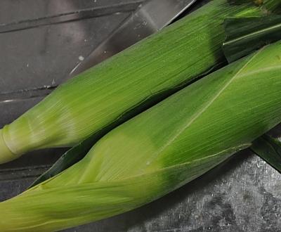 201407_corn_01.jpg