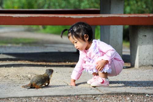 リスと遊ぶ娘