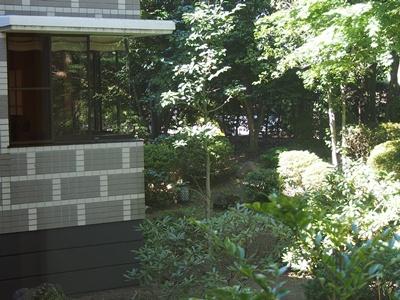 P8060029.jpg