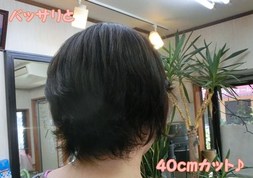 CIMG6810.jpg