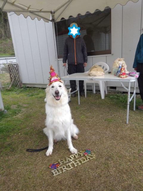 3歳おめでとうココ