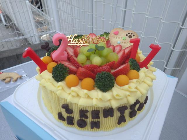 3匹の誕生日ケーキとびっきり豪華なやつ