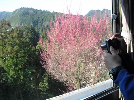 2 奈良交通路線バス・車内