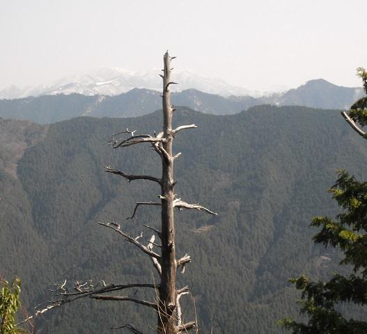 13 櫃ケ岳から大峰山系の弥山方面