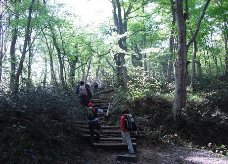 4 夏山登山道の登山口付近