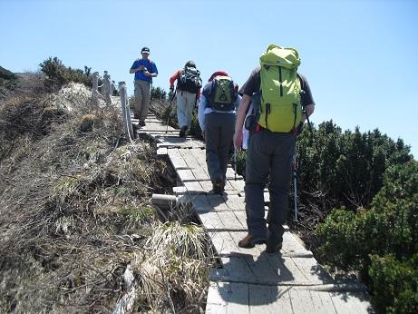 12 夏山登山道の木道