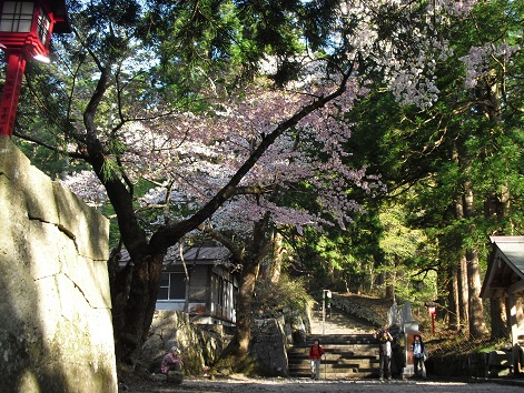 11 大神山神社奥宮