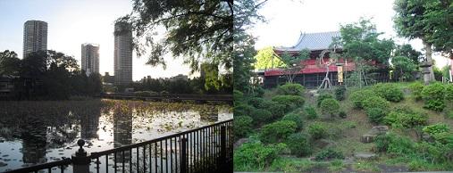 8 上野公園