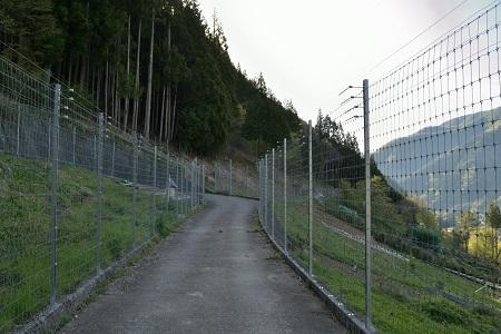 登山道への道
