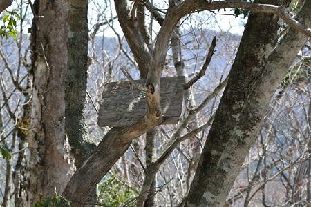 熊倉山の看板