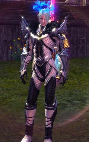 未知のコレクション鎧