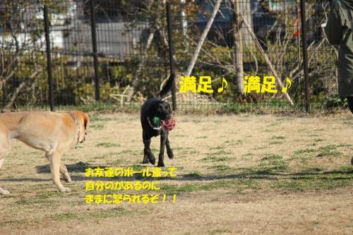 IMG_7923.jpg