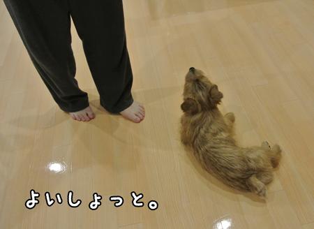 20140503_01.jpg