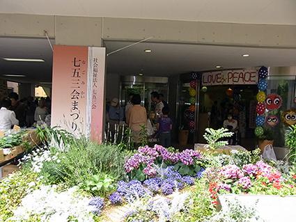 kotoshimoRIMG0553.jpg