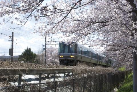 東海道線沿い