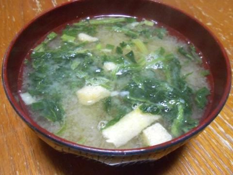 京風味噌汁
